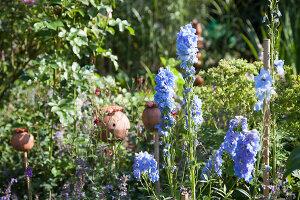 Bildno.: 11346634<br/><b>Feature: 11346627 - The Sculpture Garden</b><br/>Romantic garden in the Saurland, Germany<br />living4media / Pietrek, Sibylle