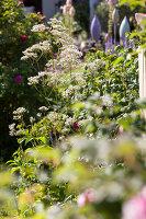 Bildno.: 11346668<br/><b>Feature: 11346627 - The Sculpture Garden</b><br/>Romantic garden in the Saurland, Germany<br />living4media / Pietrek, Sibylle