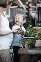 Bildno.: 11374528<br/><b>Feature: 11374522 - City Gardening</b><br/>All you need is a balcony and a few pots to grow your favourite foods<br />living4media / Eising Studio - Food Photo &amp; Video