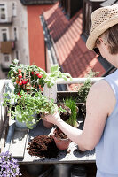 Bildno.: 11374538<br/><b>Feature: 11374522 - City Gardening</b><br/>All you need is a balcony and a few pots to grow your favourite foods<br />living4media / Eising Studio - Food Photo &amp; Video