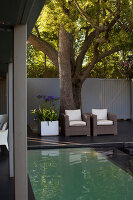 Bildno.: 11382442<br/><b>Feature: 11382433 - Dramatic Outdoor Spaces</b><br/>Contemporary split-level garden in Parkmore, Johannesburg<br />living4media / Great Stock!