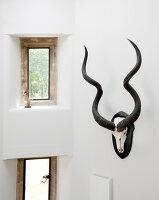Bildnr.: 11388916<br/><b>Feature: 11388772 - Mein Haus - mein Schloss</b><br/>Ehemaliges Jagdanwesen in Dorset<br />living4media / Cox, Stuart