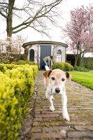 Bildno.: 11391090<br/><b>Feature: 11391082 - National Treasure</b><br/>Renovating a listed house in the Netherlands<br />living4media / Klazinga, Jansje