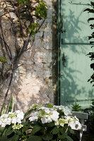 Bildnr.: 11394088<br/><b>Feature: 11394048 - Franz&#246;sische Geschichte</b><br/>Stilecht eingerichtetes Haus aus dem 18. Jahrhundert in P&#233;rigord<br />living4media / Hallot, Olivier
