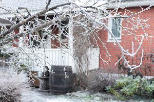 Bildnr.: 11400350<br/><b>Feature: 11400280 - Wohliges Winter-Wei&#223;</b><br/>Weihnachten bei Familie Hirsch in Schweden<br />living4media / M&#246;ller, Cecilia