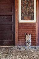Bildnr.: 11407420<br/><b>Feature: 11407405 - Sophisticated Country Style</b><br/>Ein ehemaliger Stall ist das perfekte Hideaway f&#252;r ein Paar aus Manhattan<br />living4media / Brandt, Jenny