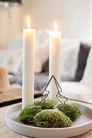 Bildno.: 11425718<br/><b>Feature: 11425675 - Forest Inspiration</b><br/>Christmas in Sweden with fresh green decoration from the forest<br />living4media / M&#246;ller, Cecilia