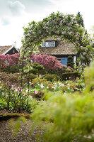 Bildno.: 11428714<br/><b>Feature: 11428706 - Tulip Time</b><br/>Spring garden in The Netherlands<br />living4media / Pietrek, Sibylle
