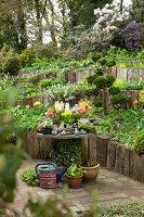 Bildno.: 11428720<br/><b>Feature: 11428706 - Tulip Time</b><br/>Spring garden in The Netherlands<br />living4media / Pietrek, Sibylle