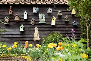 Bildno.: 11428724<br/><b>Feature: 11428706 - Tulip Time</b><br/>Spring garden in The Netherlands<br />living4media / Pietrek, Sibylle