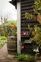 Bildno.: 11428726<br/><b>Feature: 11428706 - Tulip Time</b><br/>Spring garden in The Netherlands<br />living4media / Pietrek, Sibylle