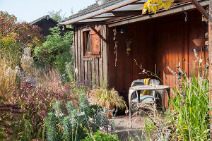 Bildno.: 11444486<br/><b>Feature: 11444463 - Green Love</b><br/>Making the most of an allotment plot in Cologne, Germany<br />living4media / Pietrek, Sibylle