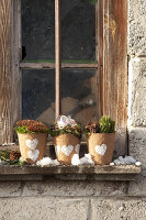 Bildnr.: 11445674<br/><b>Feature: 11445673 - Einen Blumentopf gewinnen</b><br/>Selbst gestaltete &#220;bert&#246;pfe als Mitbringsel und Winterdeko<br />living4media / Fr&#246;hlich, Heidi