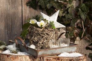 Bildnr.: 11445704<br/><b>Feature: 11445673 - Einen Blumentopf gewinnen</b><br/>Selbst gestaltete &#220;bert&#246;pfe als Mitbringsel und Winterdeko<br />living4media / Fr&#246;hlich, Heidi