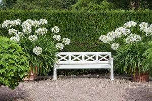 Bildno.: 11457442<br/><b>Feature: 11457439 - Sofiero Castle Garden</b><br/>Castle garden in Helsingborg, Sweden<br />living4media / Pietrek, Sibylle