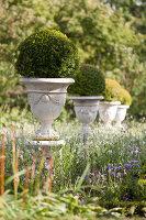 Bildno.: 11457466<br/><b>Feature: 11457439 - Sofiero Castle Garden</b><br/>Castle garden in Helsingborg, Sweden<br />living4media / Pietrek, Sibylle