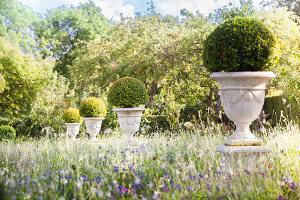 Bildno.: 11457468<br/><b>Feature: 11457439 - Sofiero Castle Garden</b><br/>Castle garden in Helsingborg, Sweden<br />living4media / Pietrek, Sibylle