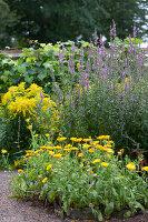 Bildno.: 11457474<br/><b>Feature: 11457439 - Sofiero Castle Garden</b><br/>Castle garden in Helsingborg, Sweden<br />living4media / Pietrek, Sibylle