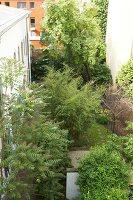 Bildnr.: 11501048<br/><b>Feature: 11501027 - Gr&#252;ne Oase in der Stadt</b><br/>Galeristin Elly liebt es in ihrem Garten zu lustwandeln und zu meditieren, Dresden<br />living4media / Krieg, Roland