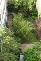 Bildnr.: 11501050<br/><b>Feature: 11501027 - Gr&#252;ne Oase in der Stadt</b><br/>Galeristin Elly liebt es in ihrem Garten zu lustwandeln und zu meditieren, Dresden<br />living4media / Krieg, Roland