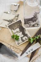 Bildnr.: 11948024<br/><b>Feature: 11948017 - Vintage-Fr&#252;hling</b><br/>Stillleben aus Heute &amp; Gestern, Blumen, Fotos und Kuchen<br />living4media / Koll, Alicja