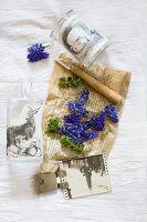 Bildnr.: 11948038<br/><b>Feature: 11948017 - Vintage-Fr&#252;hling</b><br/>Stillleben aus Heute &amp; Gestern, Blumen, Fotos und Kuchen<br />living4media / Koll, Alicja