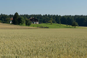 Bildnr.: 11950712<br/><b>Feature: 11950711 - Preisgekr&#246;ntes Kulturgut</b><br/>Zwei abgetragene historische Bauernh&#228;user wurden wieder aufgebaut, &#214;sterreich<br />living4media / von Oswald, Yvonne