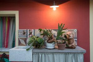 Bildno.: 11956162<br/><b>Feature: 11956152 - Mid-Century Italian Charm</b><br/>An architect&#39;s showroom in Sarzana, Italy<br />living4media / Tamborra, Enza