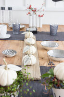 Bildno.: 11979196<br/><b>Feature: 11979179 - New Autumn Colours</b><br/>A new look for autumn decoration: a table in white<br />living4media / Algermissen, Astrid