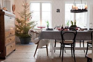 Bildno.: 11990678<br/><b>Feature: 11990664 - Christmas on the Family Farm</b><br/>Celebrating Christmas in Dalum, Sweden<br />living4media / Isaksson, Camilla