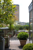 Bildno.: 12100964<br/><b>Feature: 12100951 - High Gardening</b><br/>Rooftop garden in Antwerp, Belgium<br />living4media / Obijn, Guy