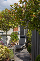 Bildno.: 12100966<br/><b>Feature: 12100951 - High Gardening</b><br/>Rooftop garden in Antwerp, Belgium<br />living4media / Obijn, Guy