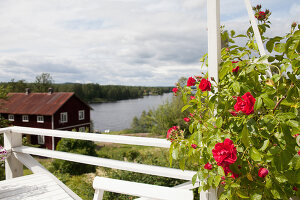 Bildno.: 12235764<br/><b>Feature: 12235722 - Idyll By The Lake</b><br/>Perfect vacations in a cosy summer home and a big old mill in Sweden<br />living4media / Isaksson, Camilla
