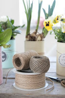 Bildno.: 12313230<br/><b>Feature: 12313229 - Tinned Pleasure</b><br/>Recycle food tins to create pastel coloured planters<br />living4media / Algermissen, Astrid