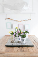 Bildno.: 12313238<br/><b>Feature: 12313229 - Tinned Pleasure</b><br/>Recycle food tins to create pastel coloured planters<br />living4media / Algermissen, Astrid