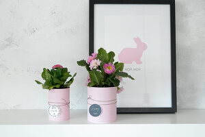 Bildno.: 12313252<br/><b>Feature: 12313229 - Tinned Pleasure</b><br/>Recycle food tins to create pastel coloured planters<br />living4media / Algermissen, Astrid