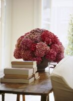 A detail of a traditional sitting room, wooden side table, pink hydrangea flowers