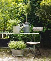 A garden chair in front of a table with zinc-plated watering cans and a bowl of herbs on a natural stone floor in a garden