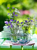 Summer flowers in drinking-glass vases in glass holder