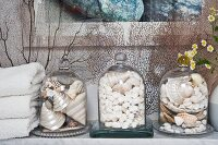 Bell jars filled with shells on marble bathroom shelf