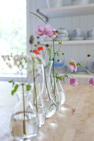 Row of single flowers in different glass vases on wooden table