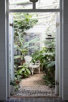 View through open door into conservatory with tropical plants and white wicker chair on cobbled floor