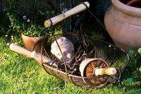 Wire basket with garden utensils