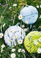 Patterned paper lanterns lying in flowery meadow