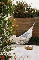 Hammock on a terrace