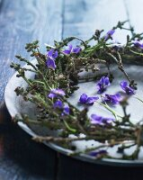 Wreath of spruce twigs and violets on vintage dish