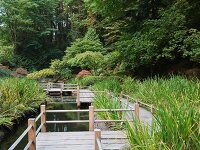 Simple wooden path by a pond in an idyllic landscape (Tea Garden, Portland)