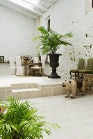 Mediterranean loggia with potted palm in front of seating area on platform
