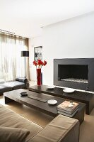 Living area with sofas, two minimalist coffee tables and contemporary fireplace