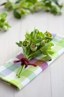 Hellebores on checked linen napkin